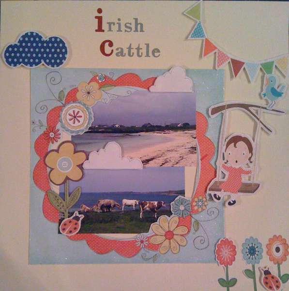 Irish Cattle...