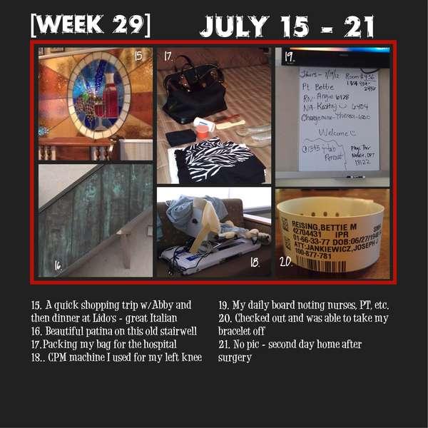 Project 365 - Week 29