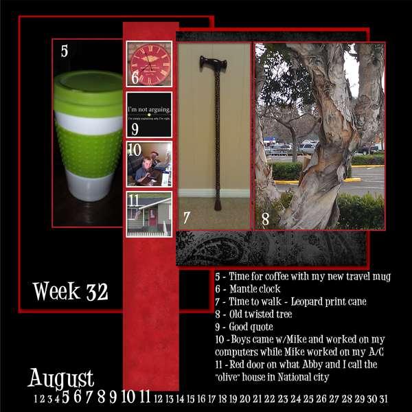 Project 365 - Week 32