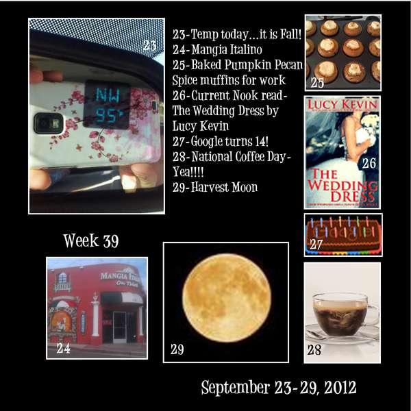 Project 365 - Week 39