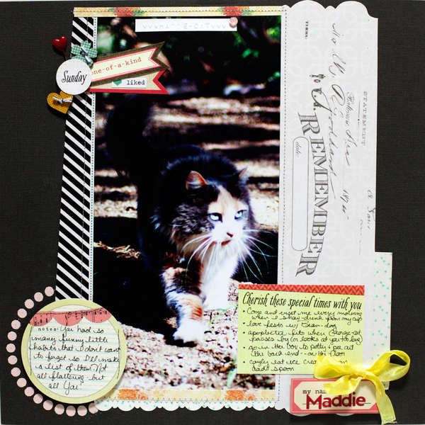 Remembering Maddie - cat -- Elle's Studio