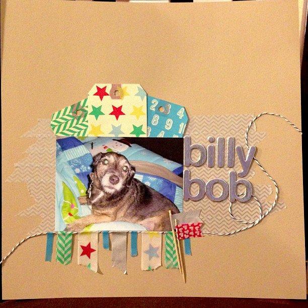NSD Billy Bob