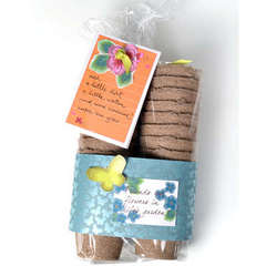 Gift Basket - Seed Starters - by sei