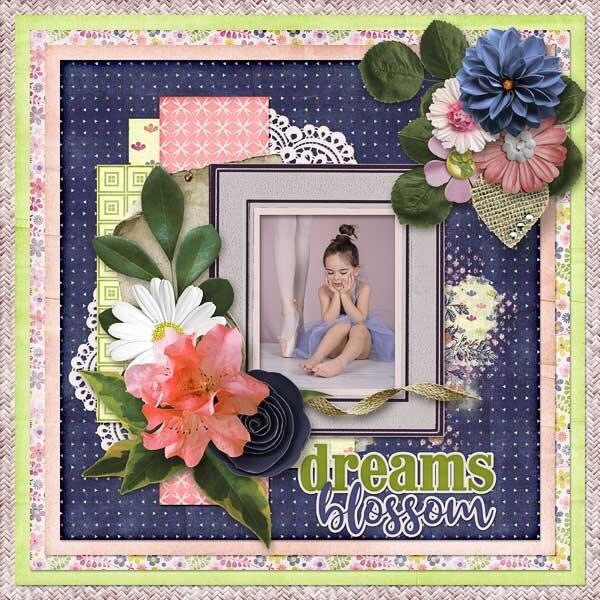 Dreams Blossom