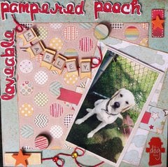 **loveable pampered pooch**