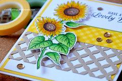 Sunflower Cheer!