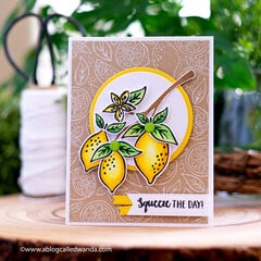 Zest Wishes! Lemon card with Hero Arts stamps and dies