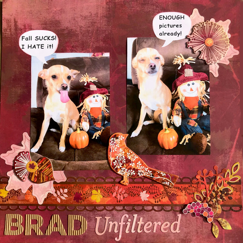 Brad Unfiltered