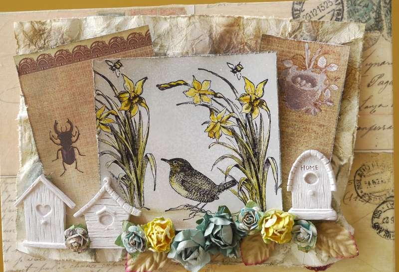 LaBlanche Spring Daffodils