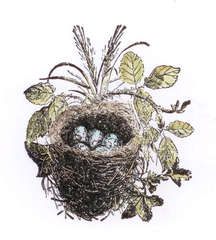LaBlanche Nest with Eggs