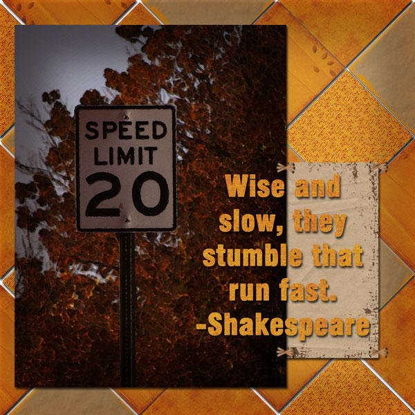 Wise and Slow