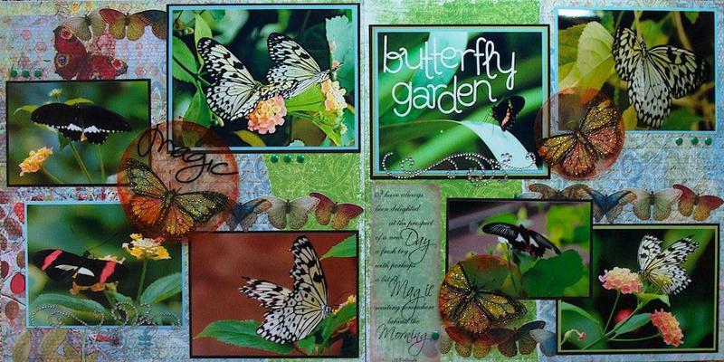 Victoria, British Columbia - Butterfly Garden