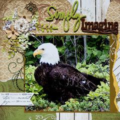 Simply Imagine. . . Eagles, Talkeetna, Alaska - LEFT SIDE