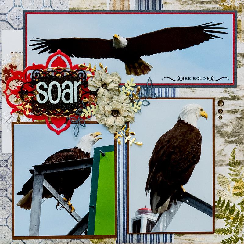 Fly - Alaska Eagles - RIGHT SIDE