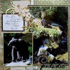 Bears, Anan Creek, Alaska - RIGHT SIDE