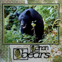 Bears, Anan Creek, Alaska - LEFT SIDE