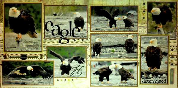 Eagle Preserve, Alaska