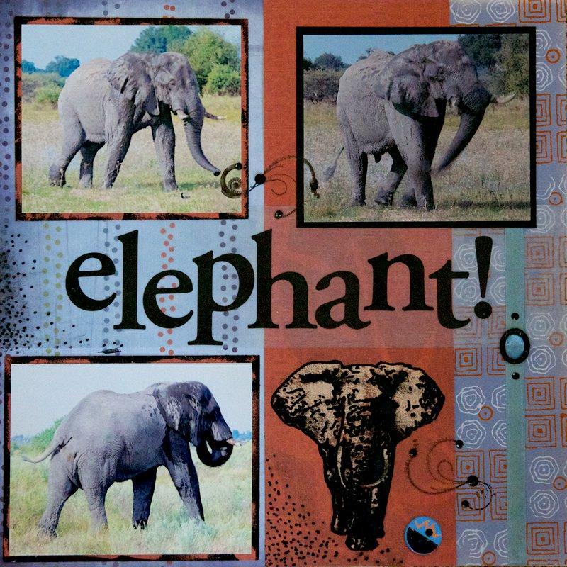 SAFARI - Botswana Elephant - RIGHT SIDE