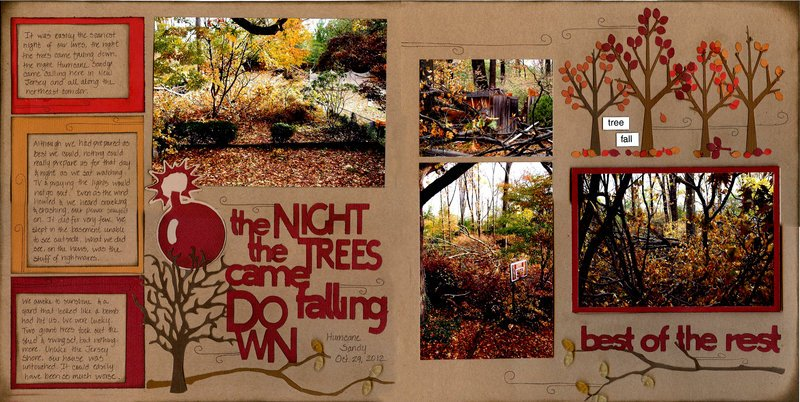 The Night The Trees Came Falling Down
