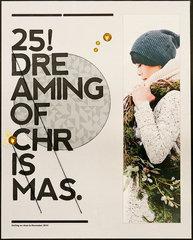 Dreaming of Christmas (Citrus Twist Kits)