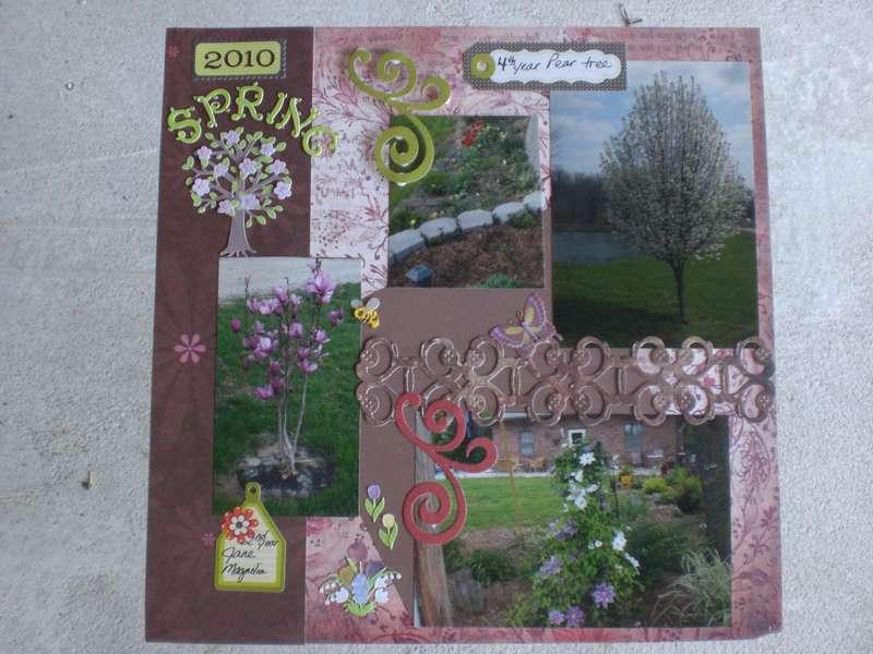 2010 Garden pictures