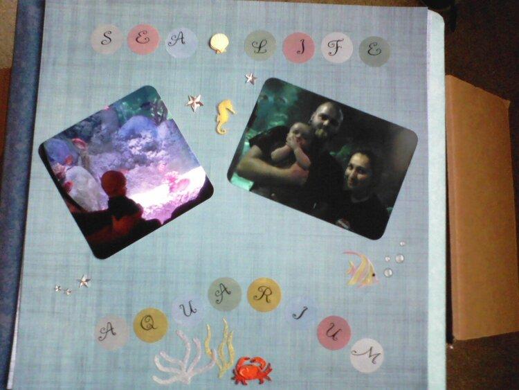 Sea Life Aquarium 1/4