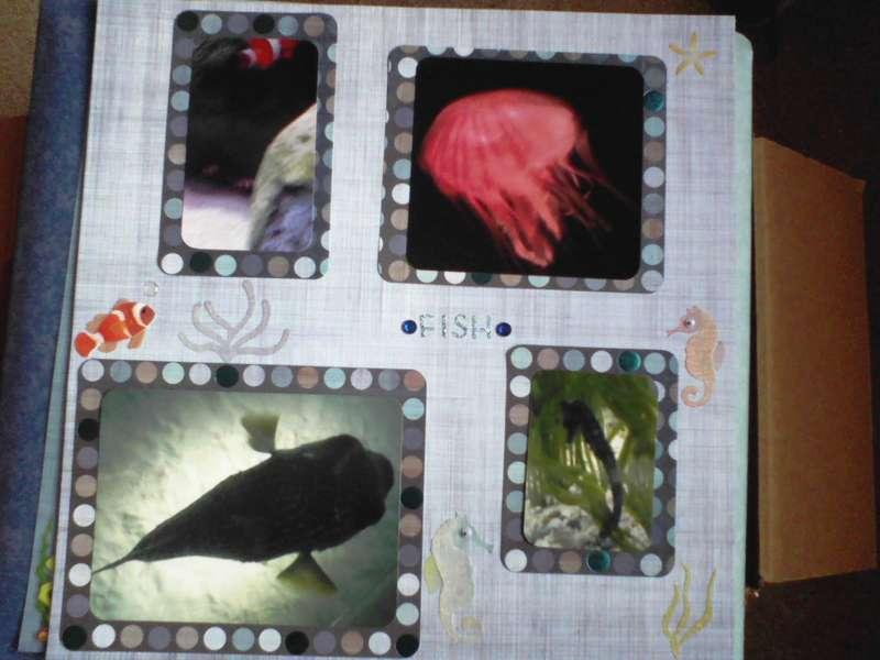 Sea Life Aquarium 2/4