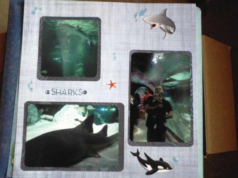Sea Life Aquarium 4/4