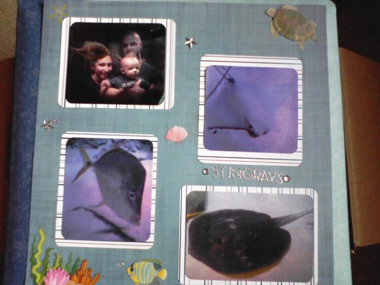 Sea Life Aquarium 3/4