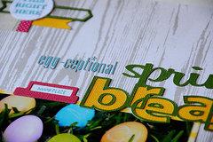 Egg-Ceptional Close2