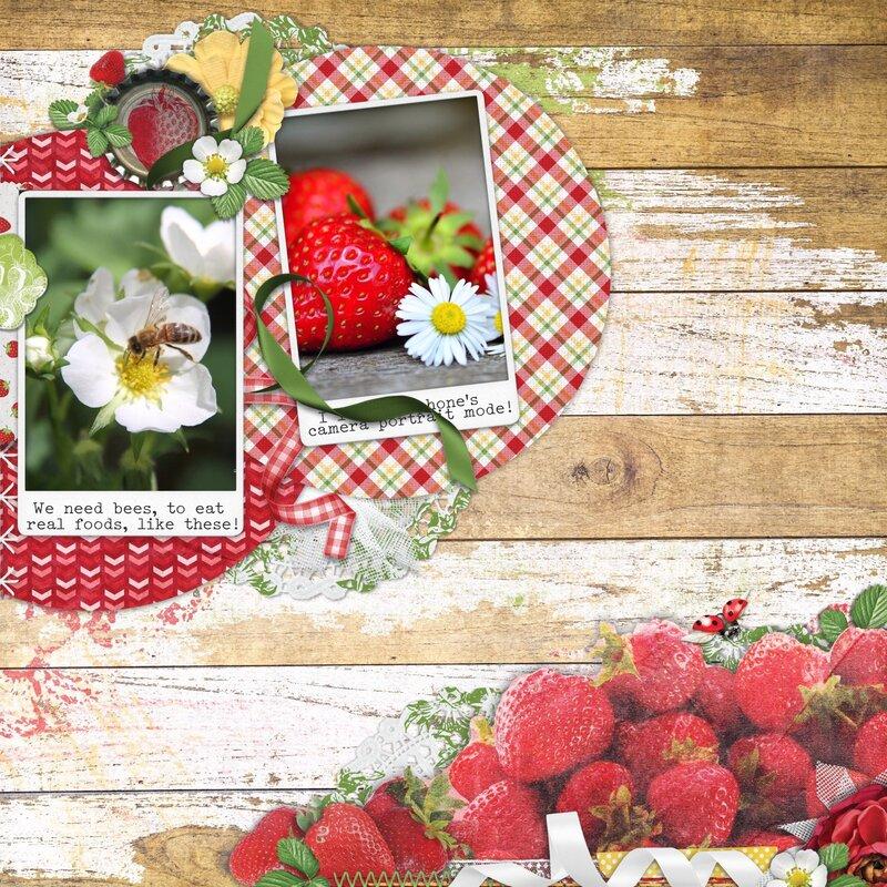 Sweet Strawberries!