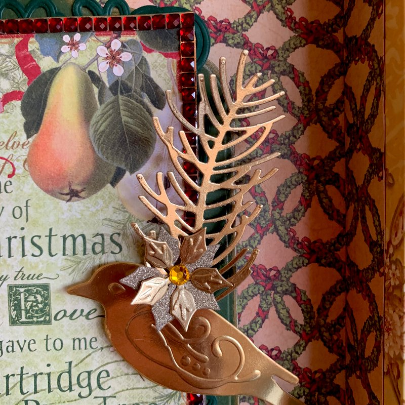 Partridge in A Pear Tree Close Up 2