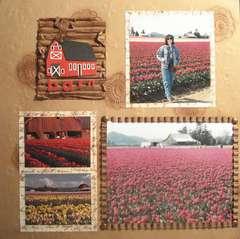 Skagit Valley Tulip Festival-Barn