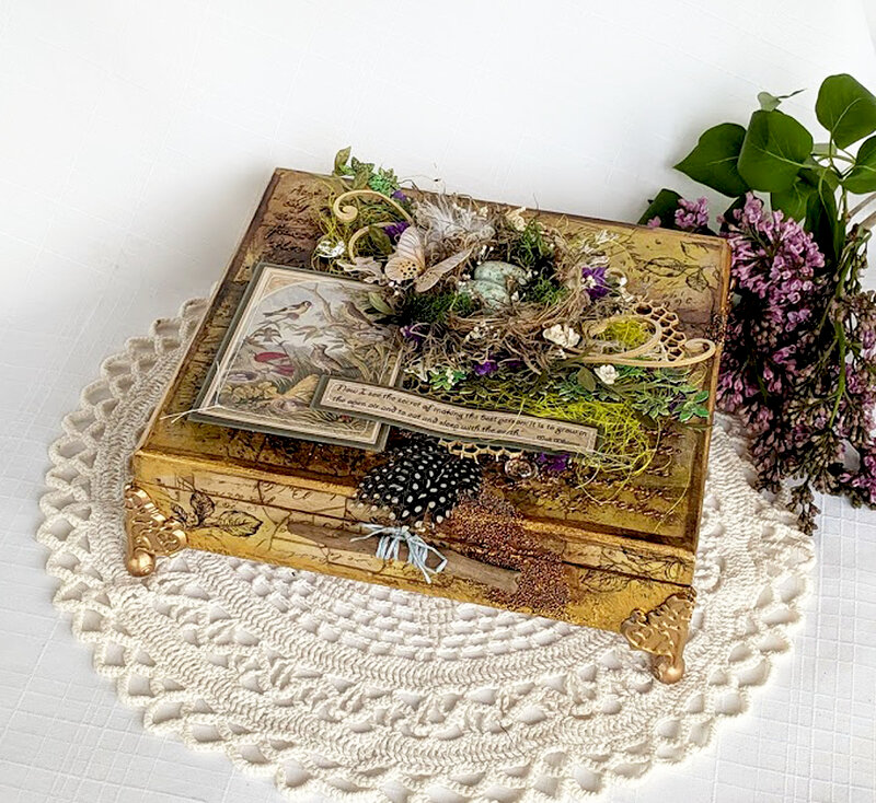 "Altered Cigar Box Swap Project ""Nature Box"""