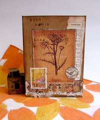 Note Card Botanical Bird