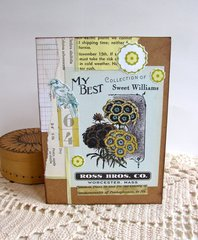Note Card Sweet William Seed Packet