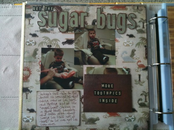 """""""sugar bugs"""""""