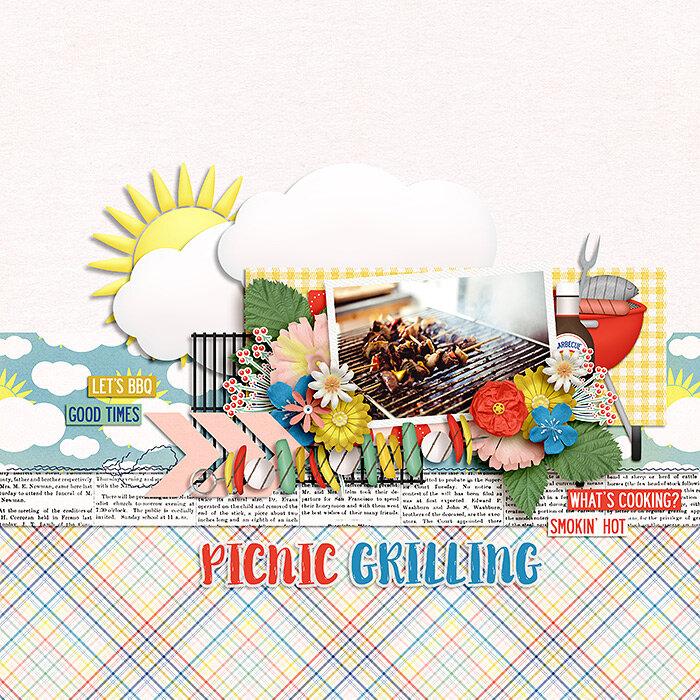 Picnic Grilling