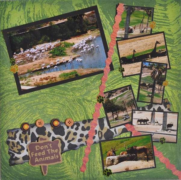 Wild Animal Park 2