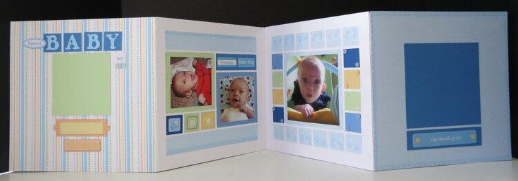 Baby mini-albums