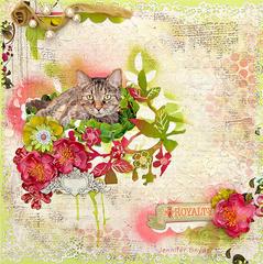 Escape Kitty in the Garden