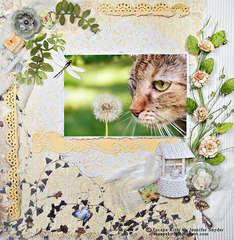 Escape Kitty -Wishing- Scraps Of Elegance Blog Hop