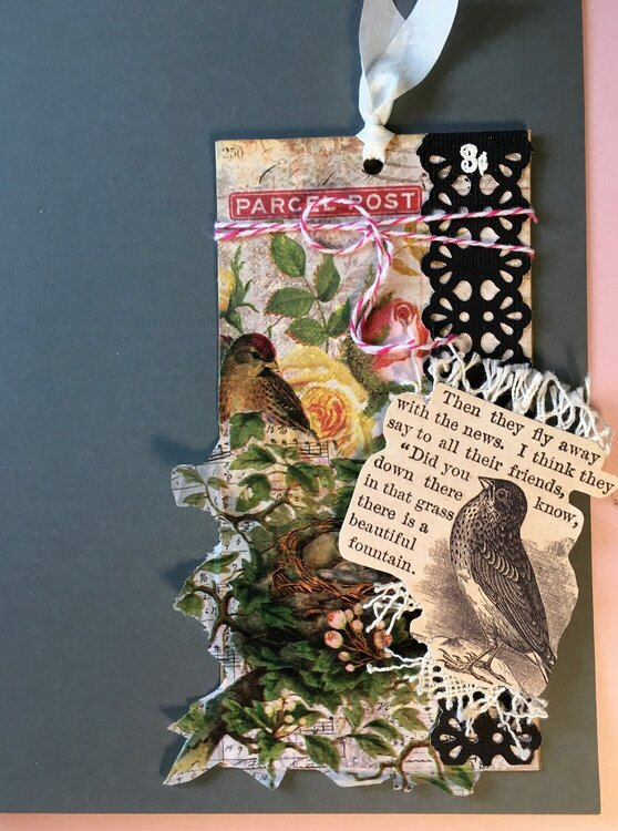 new beginnings (early!) pre-Spring tag