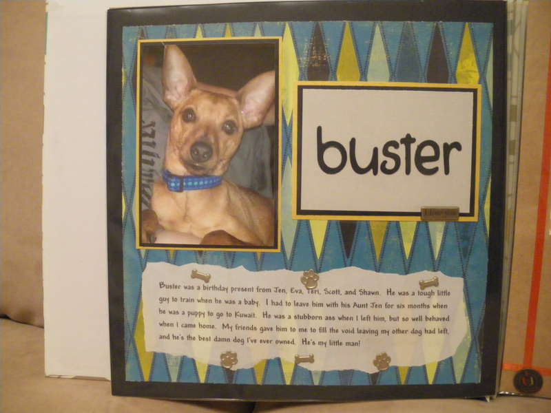 Buster IV