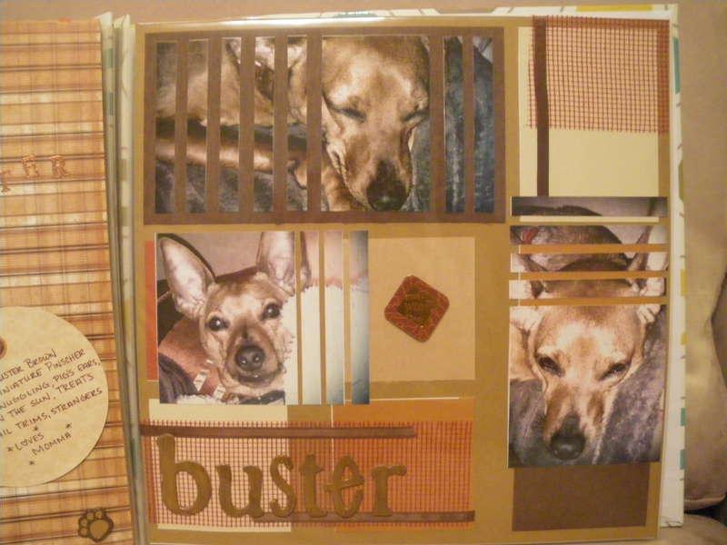Buster V
