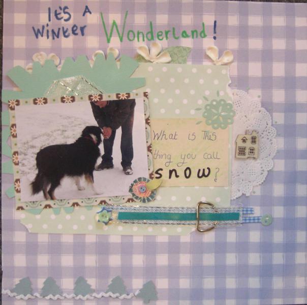 Its a winter wonder land