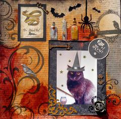 Dr. Black Cat - Potions & Antidotes - By Appointment Only