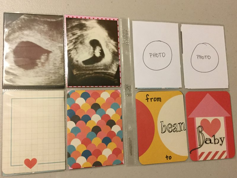 Baby Book - From Bean to Baby