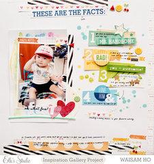 Fun Facts *Elle's Studio*