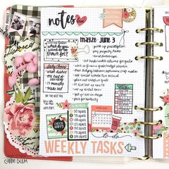 Daily and Weekly Planning